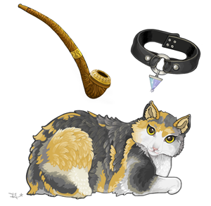 A client's cat, smoking pipe and collar.